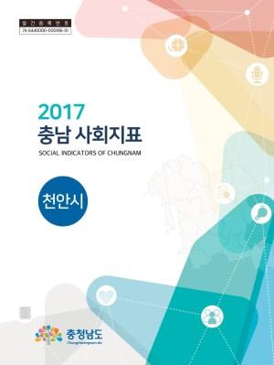 2017년 충남 사회지표 조사 보고서